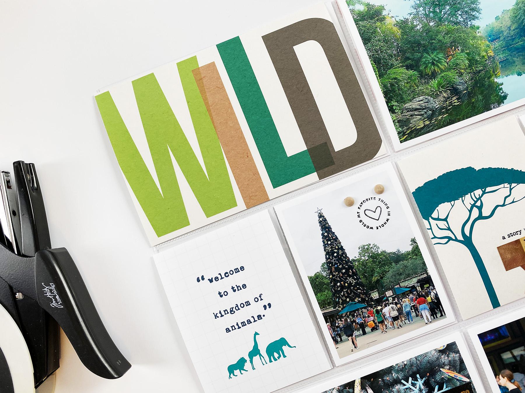 IMP Theme Parks Vol 02 | Documenting Animal Kingdom